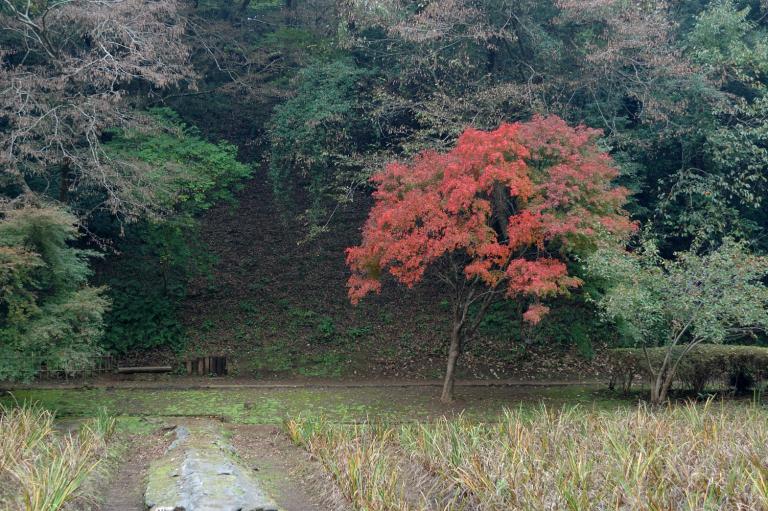 泉自然公園 2