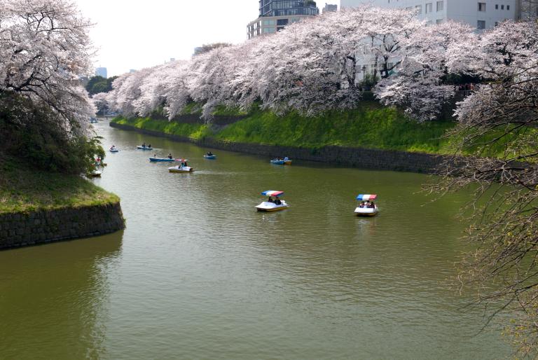 春爛漫 ボートに興ずる人々