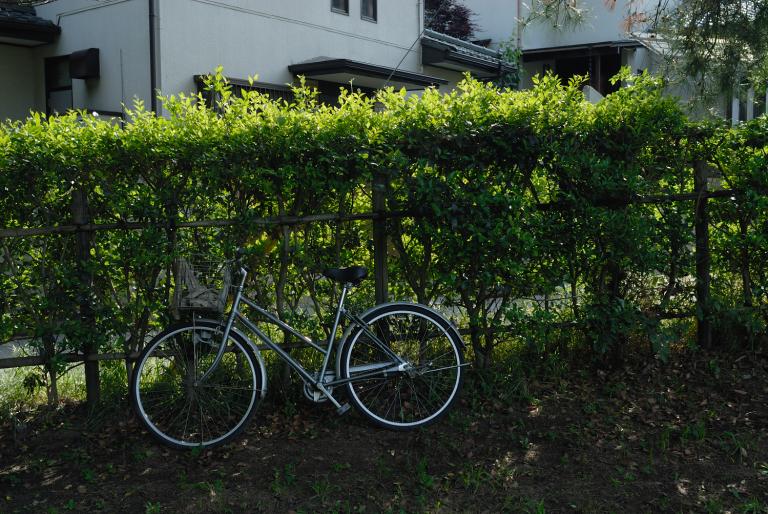 銀の自転車に