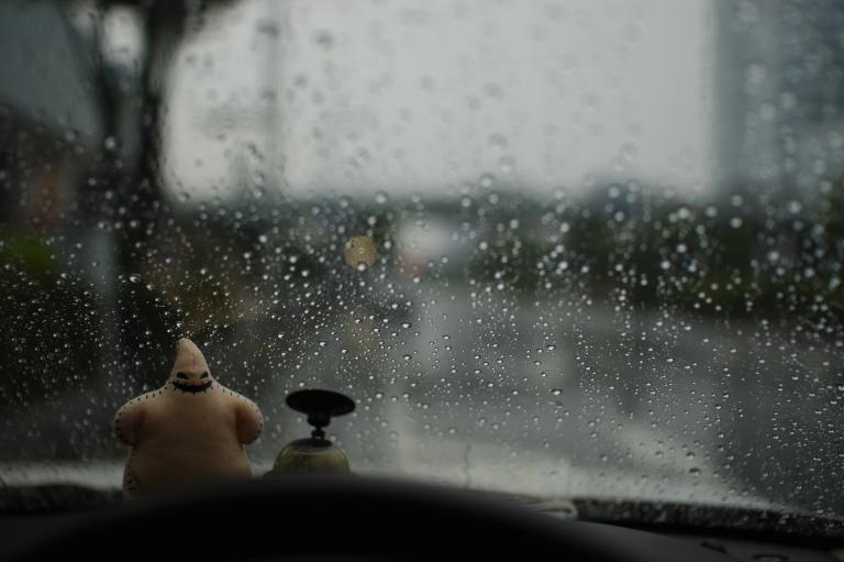 雨かぁ・・