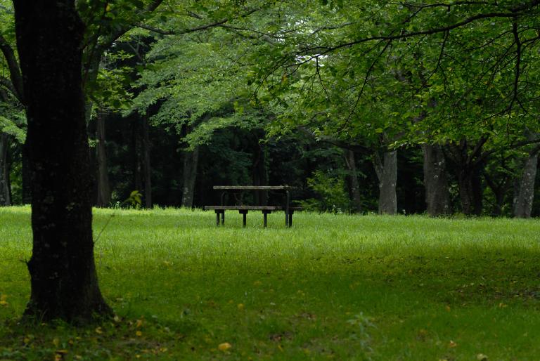 ベンチのある風景