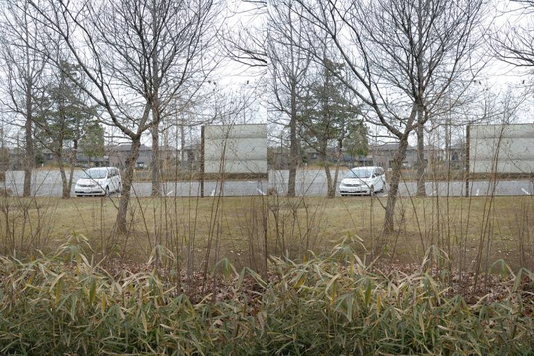 stereo写真< 交差法>
