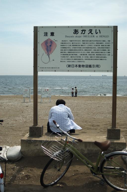遊泳禁止なわけ
