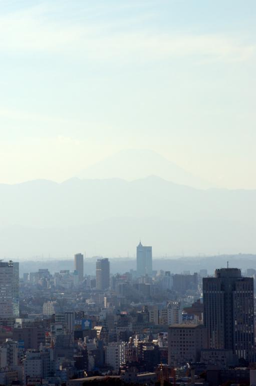 Happy New Year 2006 富士山が見え・・たことにしよう