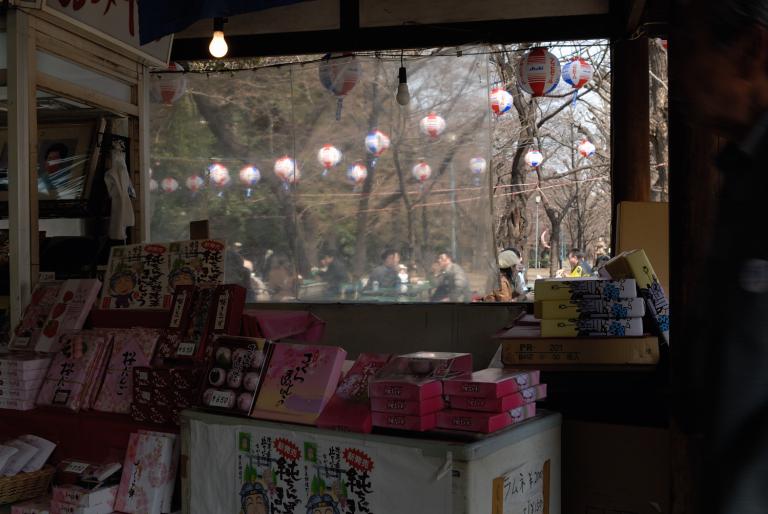 早咲きの桜など 靖国神社スナップ 4/12