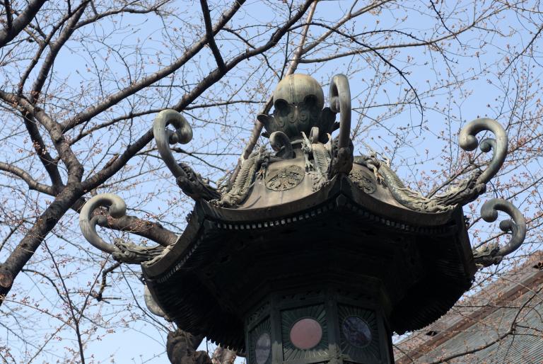 早咲きの桜など 靖国神社スナップ 8/12