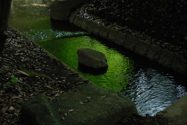 another green XXVIII