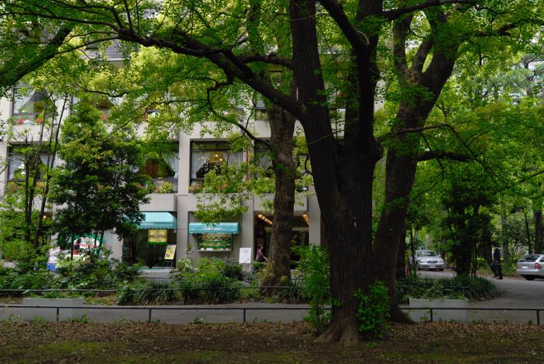 s n a p ( 日比谷公園 )
