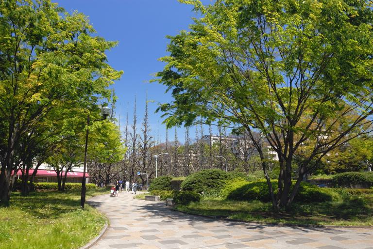 4月29日午前11時 神宮外苑